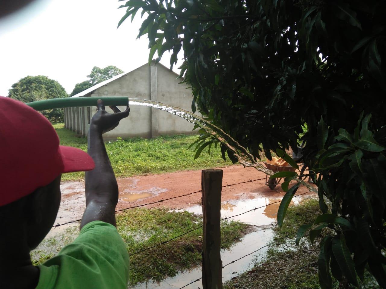 Wasserqualität testen 3