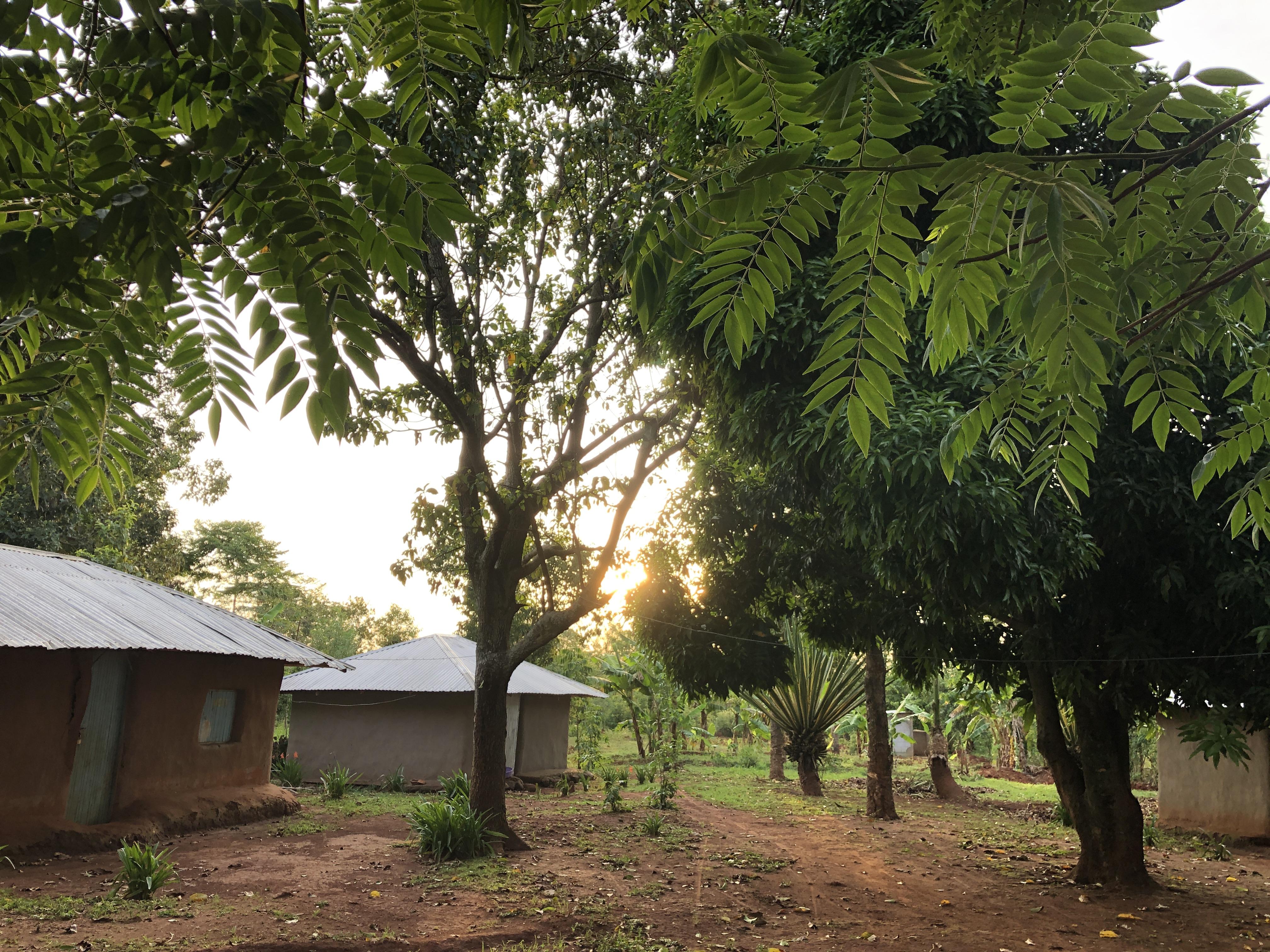 Das Dorf Uhola
