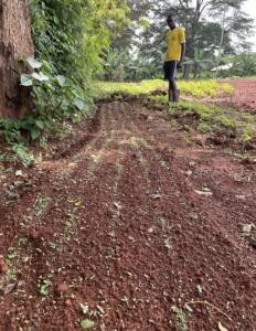 Neues aus Uhola_September21 (8)
